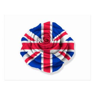 Bandera color de rosa británica en blanco postal