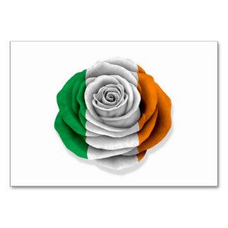 Bandera color de rosa irlandesa en blanco