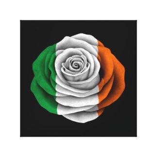 Bandera color de rosa irlandesa en negro lienzo envuelto para galerias