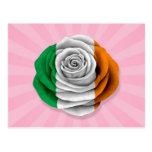 Bandera color de rosa irlandesa en rosa tarjeta postal