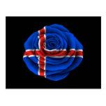Bandera color de rosa islandesa en negro tarjeta postal