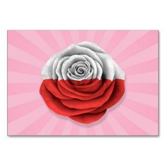 Bandera color de rosa polaca en rosa