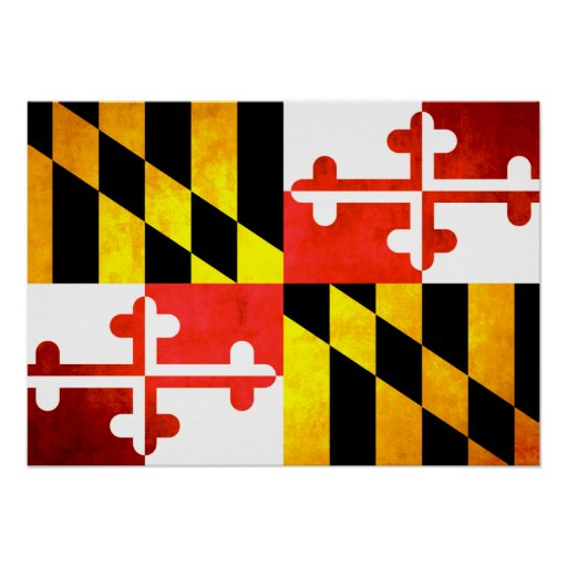 Bandera colorida de Marylander del contraste Impresiones