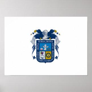 Bandera de Aguascalientes Póster