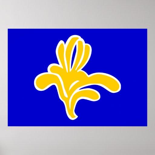 Bandera de Bélgica Bruselas Póster