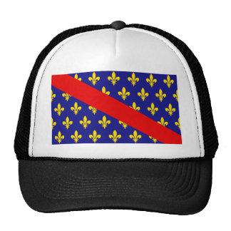 Bandera de Borbonés Francia Gorros