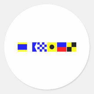 Bandera de código Daniel Pegatina Redonda