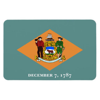Bandera de Delaware Imán Rectangular