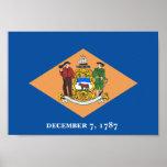 Bandera de Delaware Poster