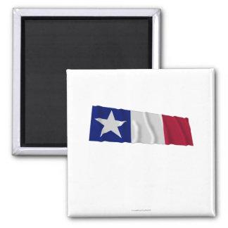 Bandera de Dodson Iman De Frigorífico