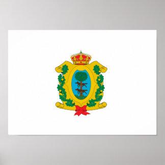 Bandera de Durango Posters