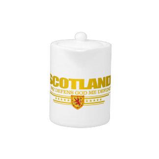 Bandera de Escocia 2