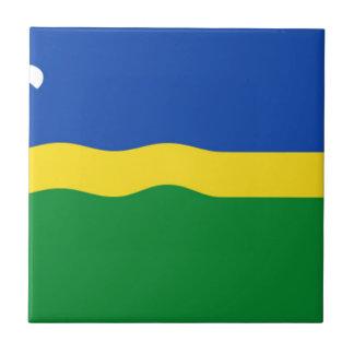 Bandera de Flevolanda Azulejo Cuadrado Pequeño