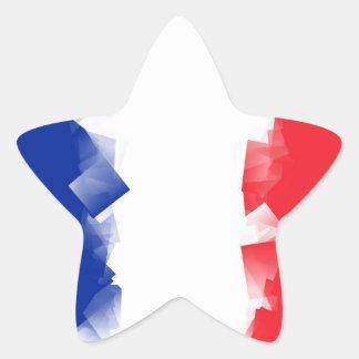 Bandera de Francia cúbica Pegatina En Forma De Estrella