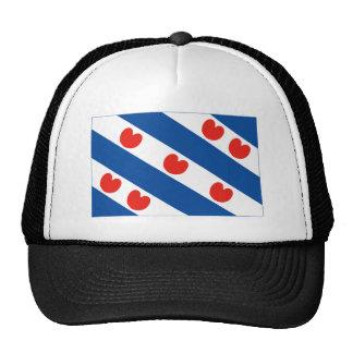 Bandera de Frisia Gorras