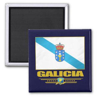 Bandera de Galicia Iman De Nevera