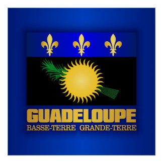 Bandera de Guadalupe Póster