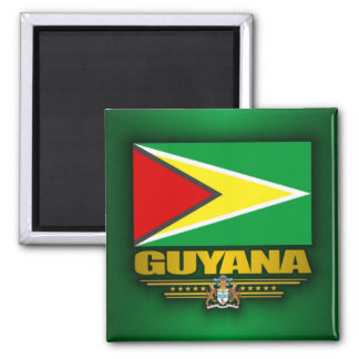 Bandera de Guyana Imán Cuadrado