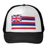 Bandera de Hawaii Gorros