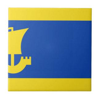 Bandera de IJlst Azulejo Cuadrado Pequeño