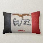 Bandera de Iowa Cojin