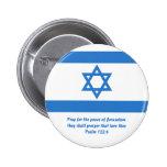 Bandera de Israel, Pins