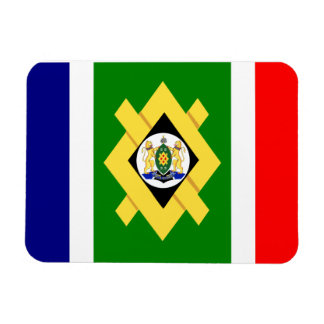 Bandera de Johannesburg Imán
