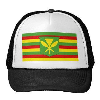 Bandera de Kanaka Maoli Gorra