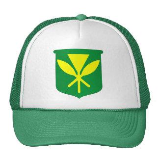 Bandera de Kanaka Maoli Gorras De Camionero