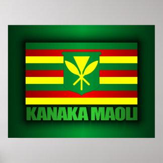 Bandera de Kanaka Maoli Poster