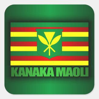 Bandera de Kanaka Maoli Pegatina Cuadrada
