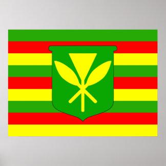 Bandera de Kanaka Maoli Póster