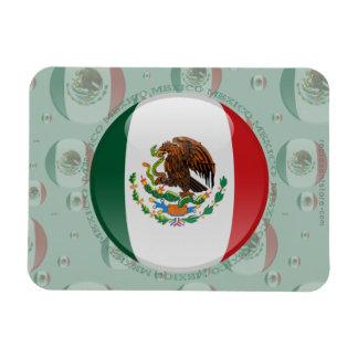 Bandera de la burbuja de México Iman Rectangular