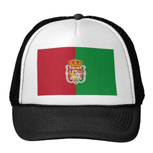 Bandera de la ciudad de Granada (España) Gorro De Camionero