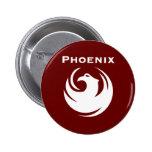 Bandera de la ciudad de Phoenix Pins
