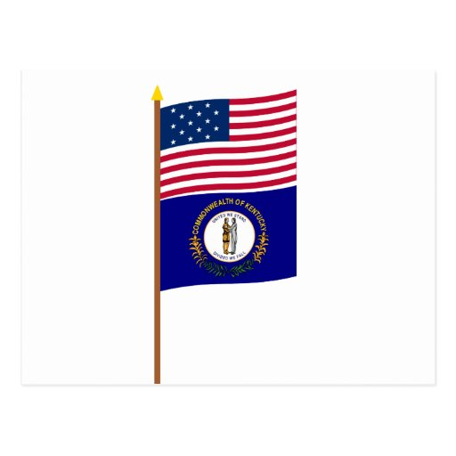 Bandera de la estrella de los E.E.U.U. 15 en polo Postales
