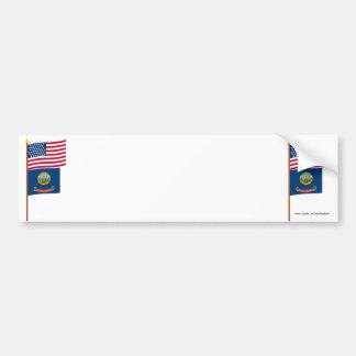Bandera de la estrella de los E.E.U.U. 43 en polo  Pegatina De Parachoque