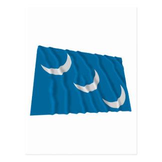 Bandera de la milicia de Carolina del Sur Postal