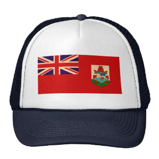 Bandera de la persona de Bermudas del modelo del v Gorros