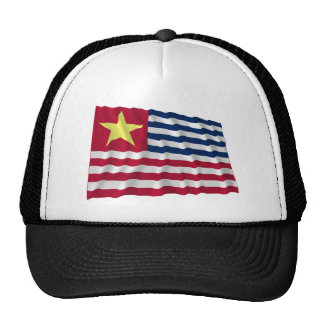Bandera de la secesión de Luisiana de 1861 Gorra