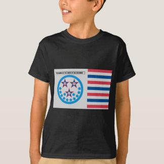 Bandera de la secesión usada por la Florida - 10 Playera