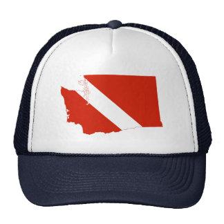 Bandera de la zambullida del estado de Washington Gorro De Camionero