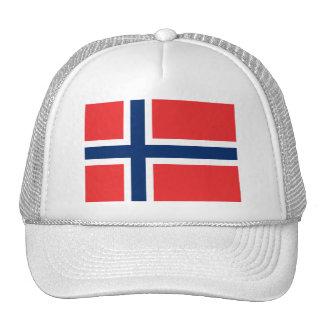 Bandera de las camisetas de Noruega, tazas, botone Gorras