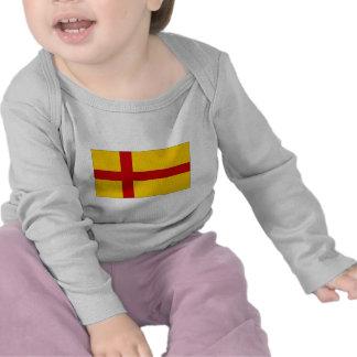 Bandera de las Islas Orcadas de Reino Unido Camisetas