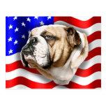 Bandera de los E.E.U.U. del patriota del dogo Postal