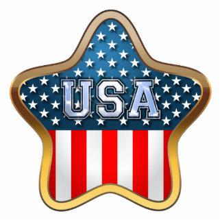 Bandera de los E.E.U.U. Imán Fotoescultura