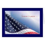 Bandera de los E.E.U.U. - para siempre en paz Tarjetas