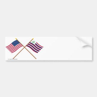 Bandera de los E.E.U.U. y bandera cruzadas de la m Etiqueta De Parachoque