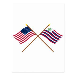 Bandera de los E E U U y bandera cruzadas de la m Tarjetas Postales