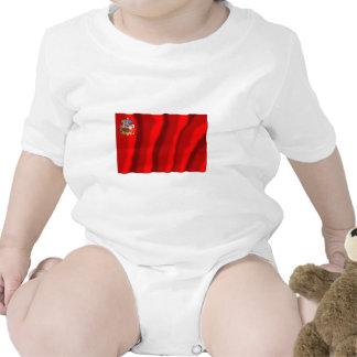 Bandera de Moscú Oblast Traje De Bebé